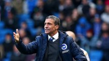 Chris Hughton has taken over at Brighton