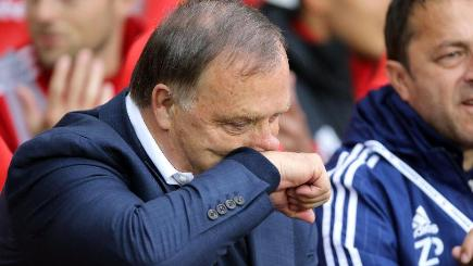 Advocaat quits Sunderland role