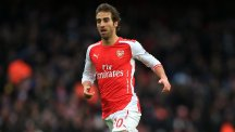 Arsenal's Mathieu Flamini, pictured, has praised the contribution of Francis Coquelin