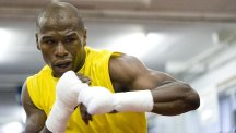 Floyd Mayweather, pictured, has been chopping wood in preparation for Saturday's clash with Manny Pacquiao