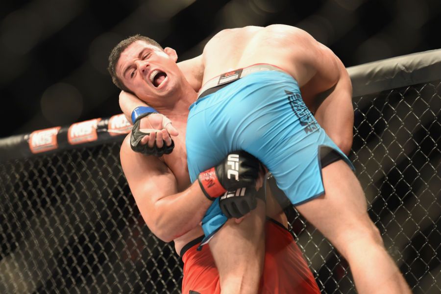 UFC in pictures: TUF 19 Finale