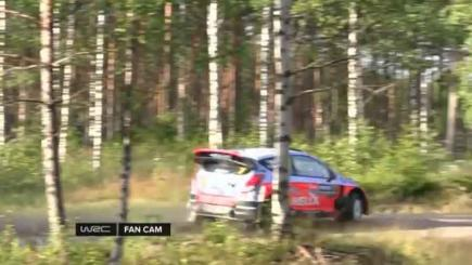 Rally driver chops tree down with epic crash