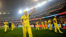 Michael Clarke ended his one-day international career with a World Cup win (AP)