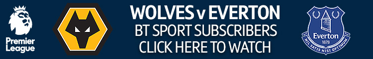 Wolves V Everton Live Stream Tv Channel And Big Match Preview